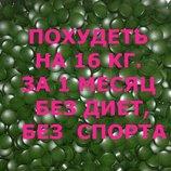 Спирулина с L-карнитином для похудения на 3-4 кг. в неделю